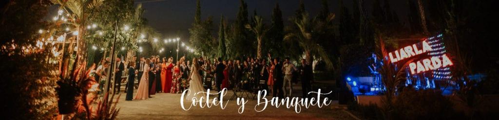 Musica para coctel de bodas Sevilla